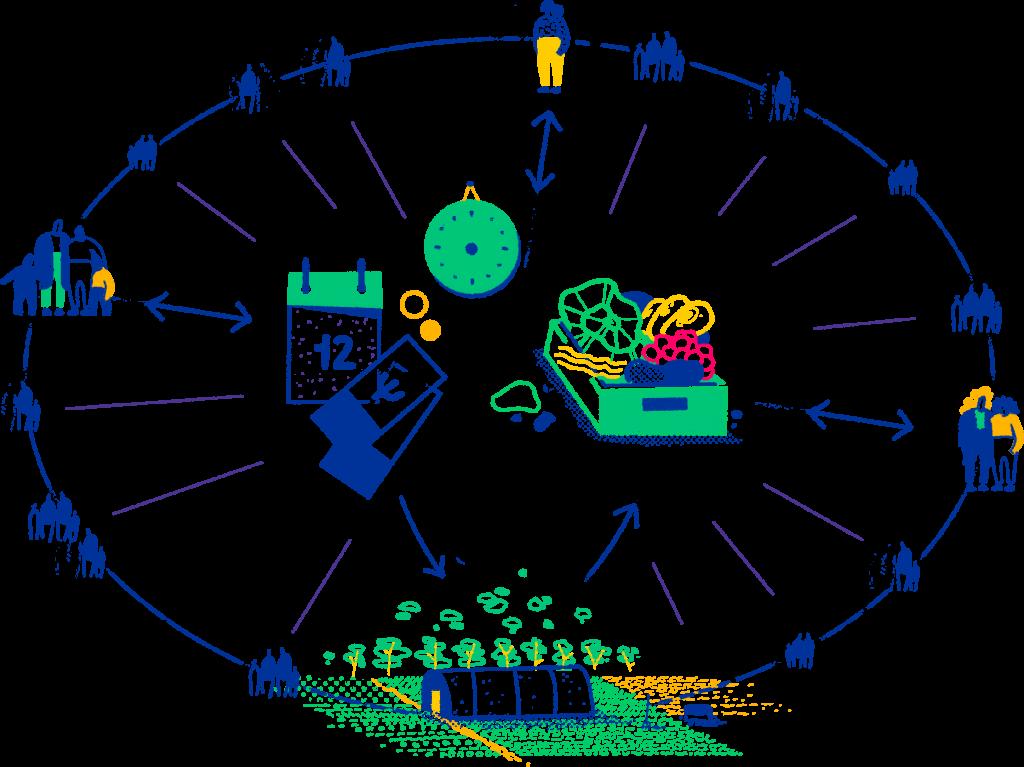Funktionsweise der solidarischen Landwirtschaft